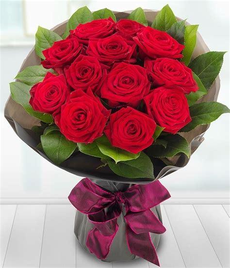 fiore rosa rossa rosa rossa fiore fiori di piante fiore di rosa rosso