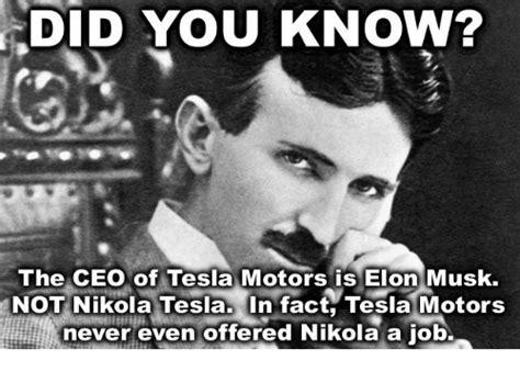 elon musk zipline 25 best memes about tesla motors tesla motors memes