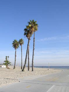 1000+ images about my hometown long beach california on