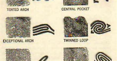 pattern evidence in forensic science fingerprint patterns fingerprint pattern forensic