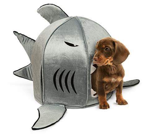 shark bed pet toys fido would buy if his card wasn t maxed out