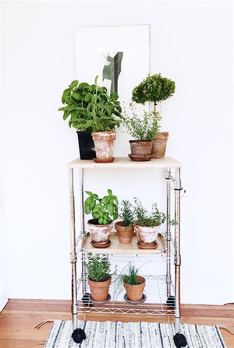diy plant stands     home