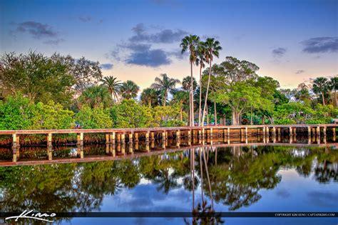 Records Palm County Florida Shepard Park Palm Tree Stuart Florida Martin County
