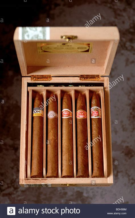 Handmade Cuban Cigars - box of handmade cuban cigars stock photo royalty free