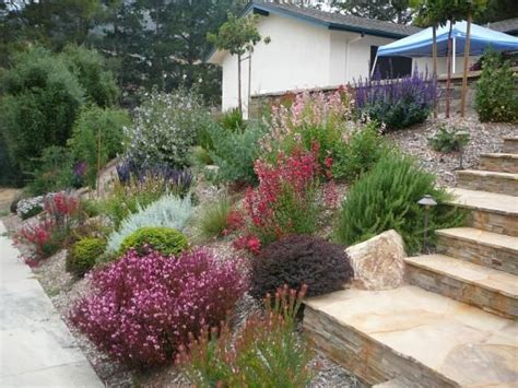 Landscape Ideas Southern California 25 Best Ideas About Drought Resistant Landscaping On