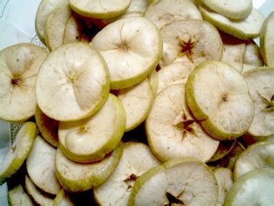 Keripik Apel 100g jual keripik apel keripik buah malang