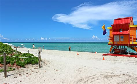 imagenes miami playa free photo miami beach beach florida sand free image