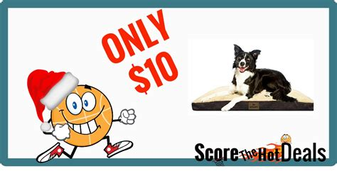 black friday dog beds black friday pricing pet bed only 10 score the hot