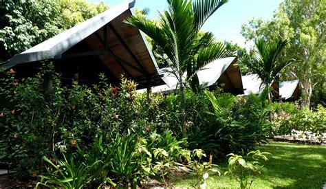 hamilton island bungalow panoramio photo of palm bungalows on hamilton island
