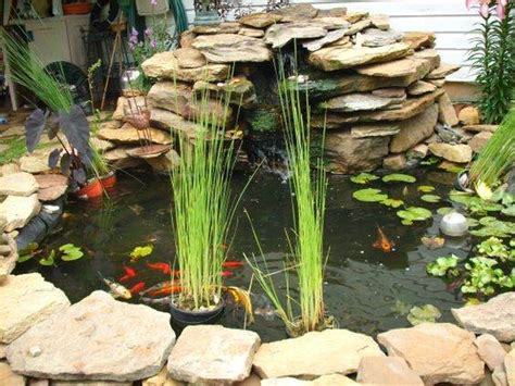 Pond Decor by Outdoor Pond Decor Gardening Flowers 101 Gardening