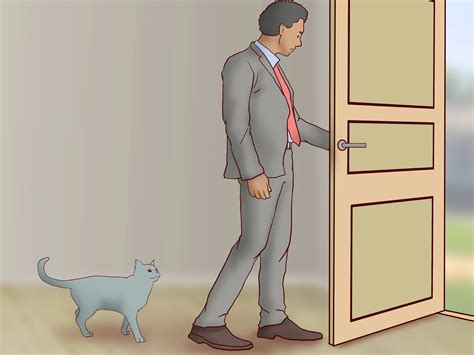 how to crate a with separation anxiety how to treat separation anxiety in cats 15 steps with pictures