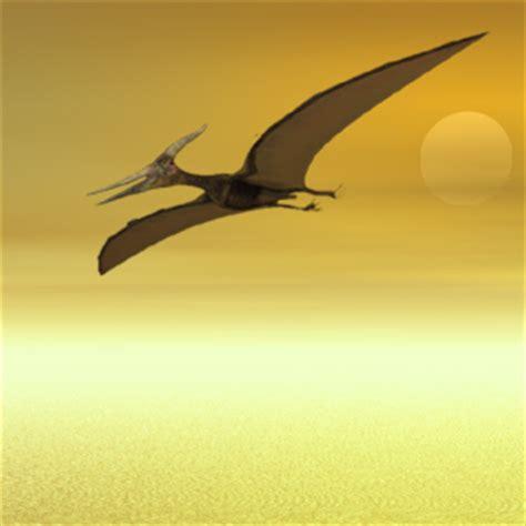 dinosauro volante terza pagina