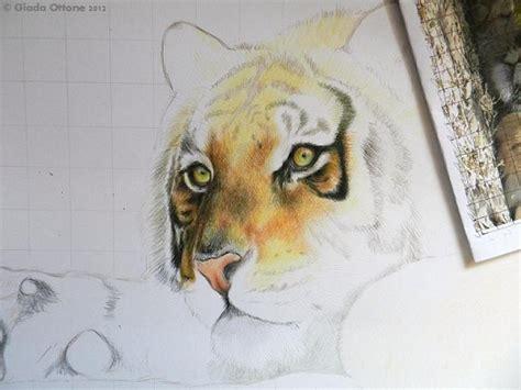 i più bei fiori colorare una tigre con le matite colorate 226 162 disegno