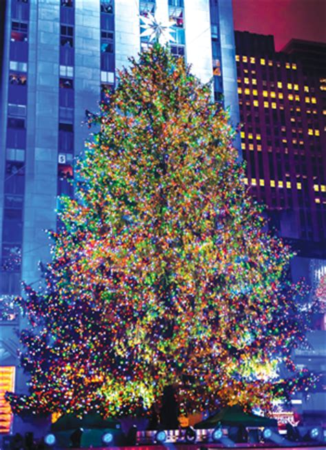 rockefeller center christmas trees nyc parker holiday
