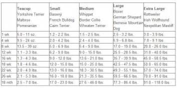 Dog growth months and weight to large breed dog depending on the