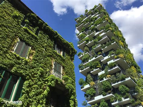 vertical forest building in vancouver features an bosco verticale vertical forest building and its old