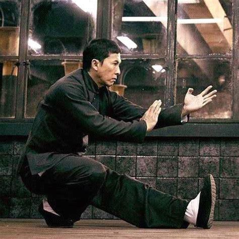 donnie yen ip man 1 ip man 3 wing chun donnie yen kick boxing