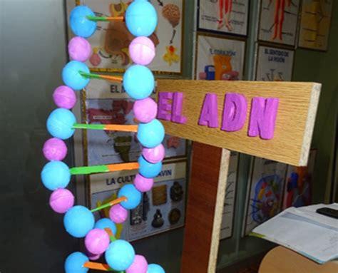 imagenes de maquetas matematicas experimentos escolares en san luis