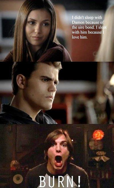 Vire Diaries Memes - tvd memes 28 images best 25 vire diaries memes ideas on pinterest vire diaries humor on