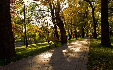 free park alley in a park wallpaper 713268