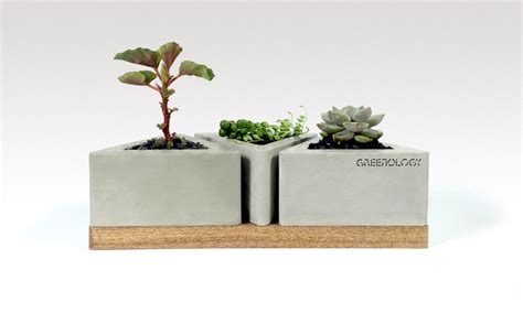 Pot Ps 125 Gr 3 greenology pot trio in wood base