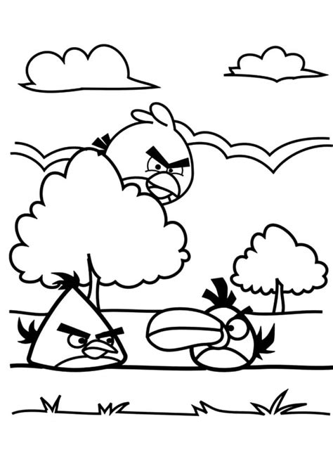coloring pages of birds in trees coloring pages of birds in trees coloring page outlined