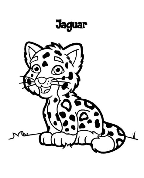 cute baby jaguar coloring pages coloring pages