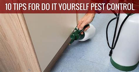 do it yourself pest control bed bugs do it yourself pest control bed bugs 28 images how to