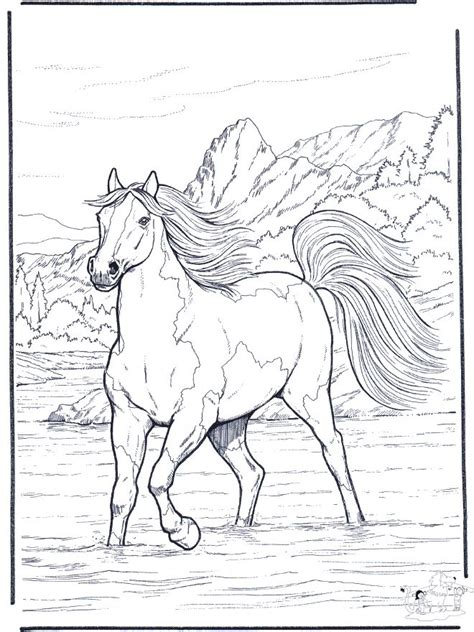 coloring pages animals horses 1000 ideas about animal coloring pages on