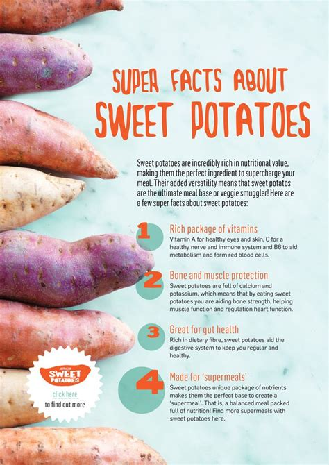 carbohydrates sweet potato carbs in pumpkin vs sweet potato