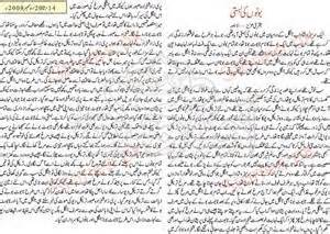 maan kochoda urdu stories picture 2