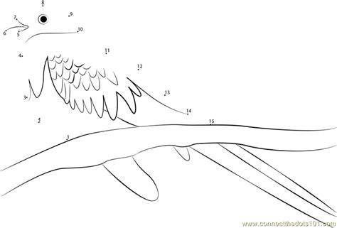 Golden Headed Quetzal Dot To Dot Printable Worksheet Quetzal Coloring Page