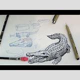 Alligator Mouth Open Drawing | 480 x 360 jpeg 36kB