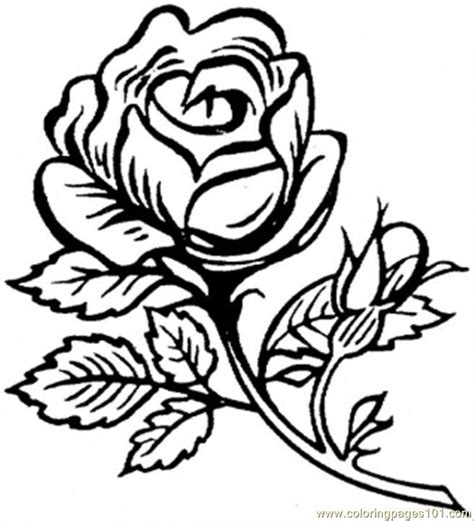 Beautiful Flowers Coloring Pages coloring pages beautiful big world gt flowers
