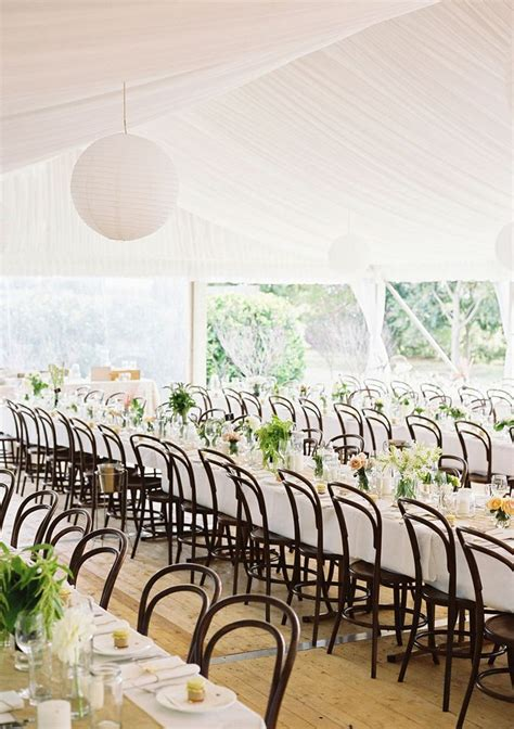 white bentwood chairs wedding 17 images about bentwood chair hire on
