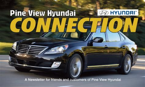 hyundai pineview pine view connection newsletter november december