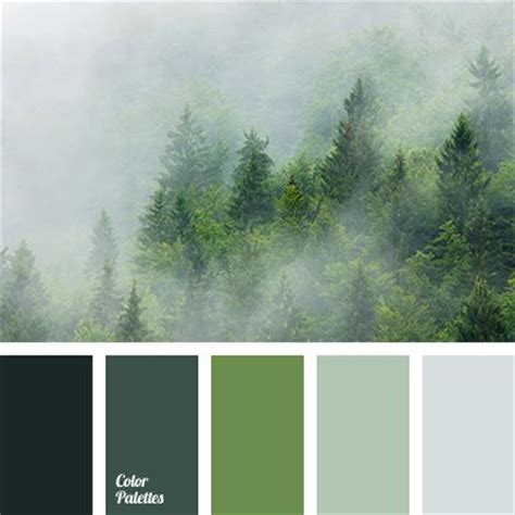 color palette ideas 25 best ideas about green color schemes on