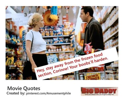 film quotes about food quot stay away from the frozen foods section quot big daddy