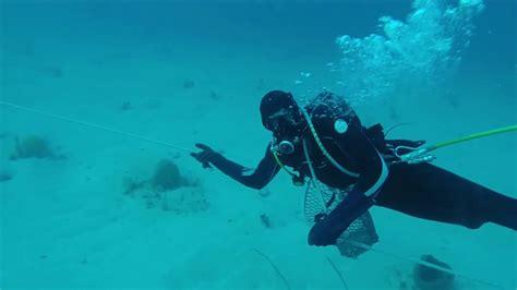 past of dive pearl diving
