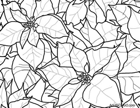 coloring page christmas flower christmas flowers coloring pages best toys collection