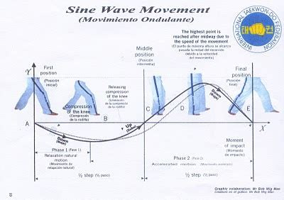 itf pattern history soo shim kwan 水心館수심관 the sine wave motion is not ever