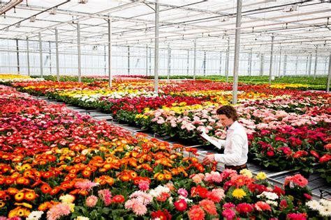 Florist In by Florist