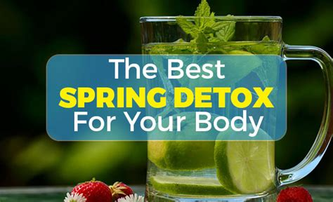 The Best Detox Shoo by Clean Your The Best Detox Stop And