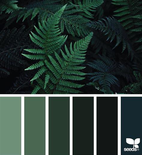 nature colors best 25 black color palette ideas on