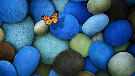 colorful stones colorful butterfly hd wallpapers rocks