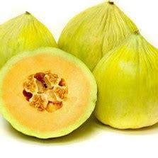 Biji Benih Anggur Mix 5 Warna Pelangi bibit cabe centennial rainbow