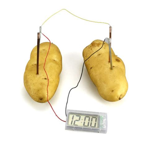 Fruit Powered Clock by Potato Powered Clock Feelgift