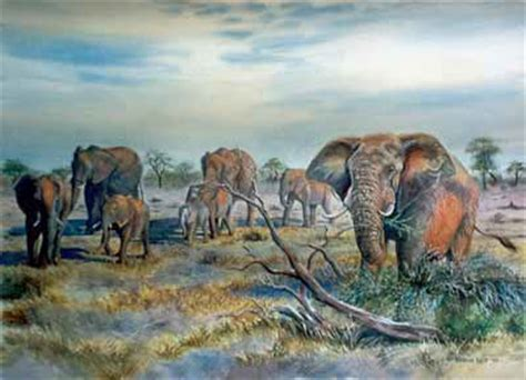 elephant herd 187 barbara philip painting