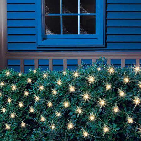 christmas light blue bushes k2 69e6ed2d 3543 434d 9c16 b430dc206e49 v1 jpg