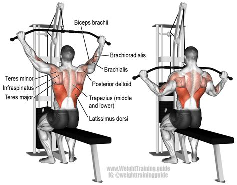 wide grip lat pull exercise guide and weight